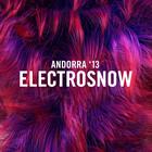 Electrosnow 2013